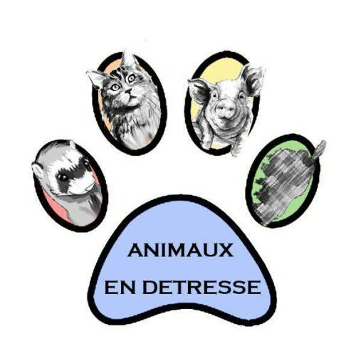 Association Animaux en détresse de Corse
